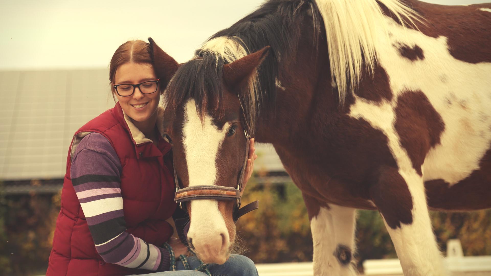 Was wir von Pferden lernen können