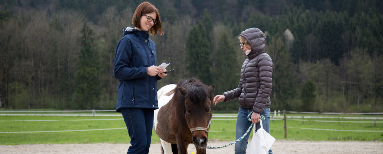 pferdegestuetztes coaching