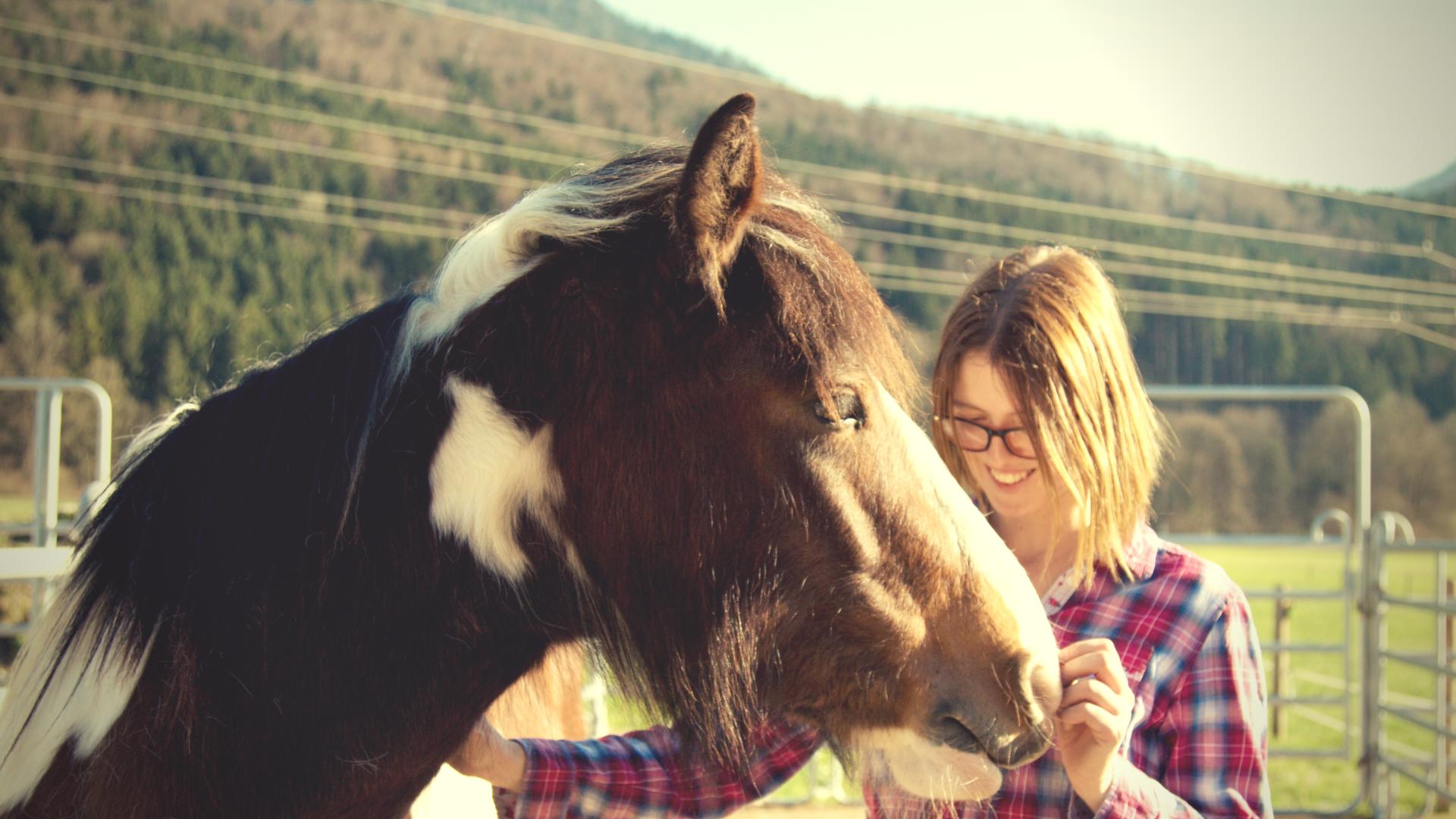 Achtsamkeit beim Umgang mit dem Pferd