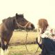 soll ich mein Pony scheren?