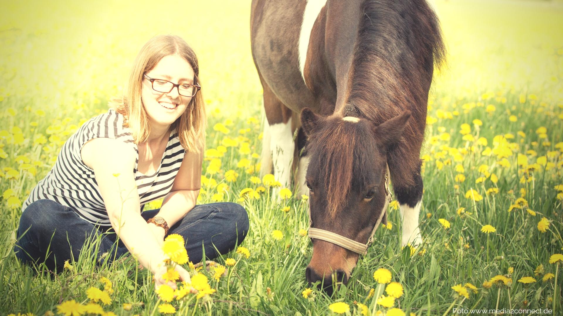 Fütterst du dein Pferd richtig?