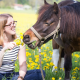 Nährstoffbedarf des Pferdes
