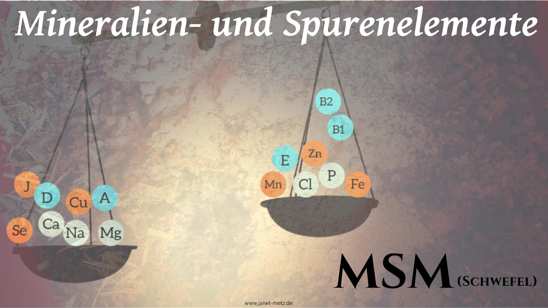 MSM (Schwefel)